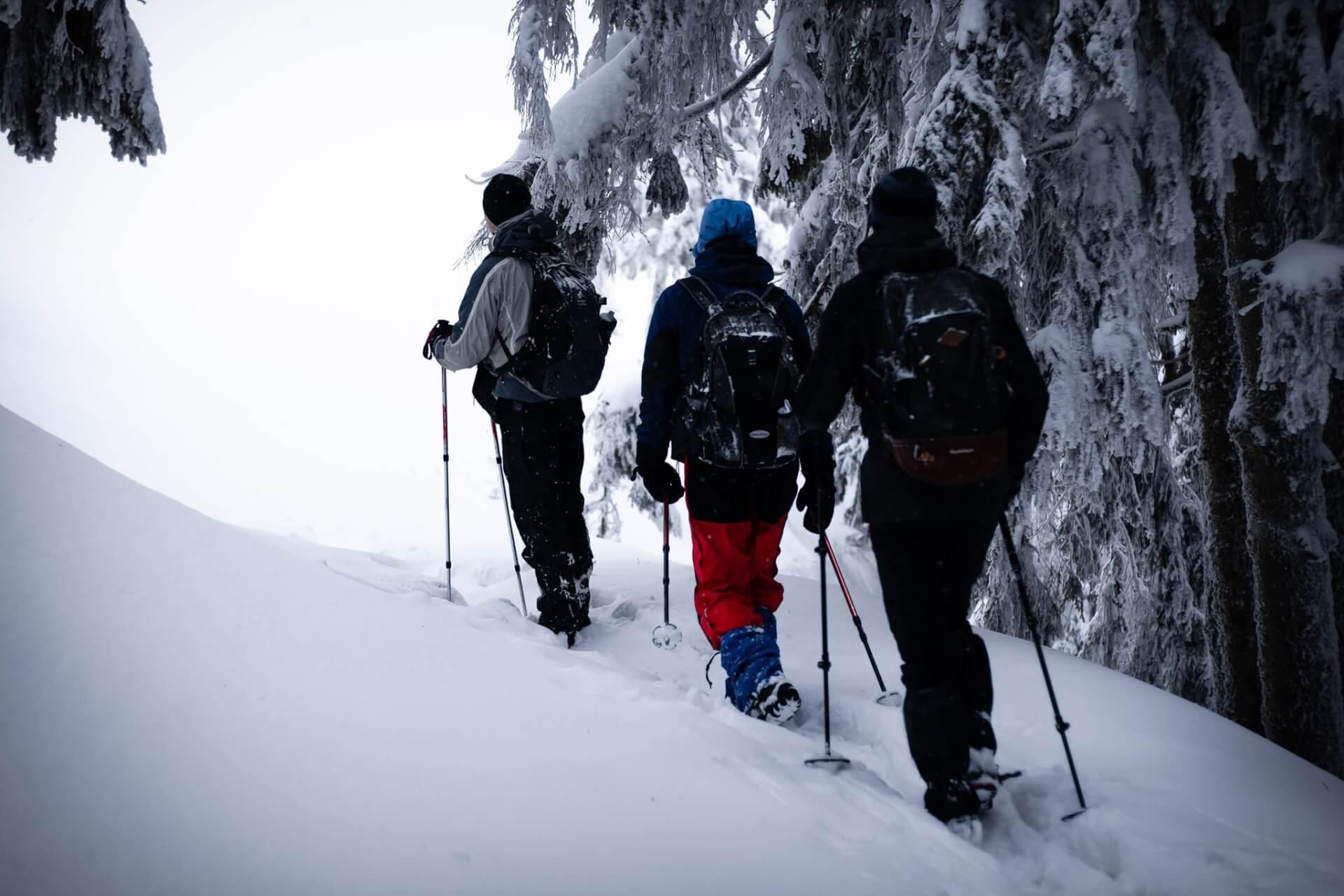 Краса і небезпека зимових гір